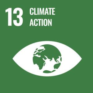ODS Acción por el clima